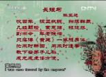 陈小旺 太极的智慧 7