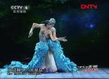 舞之灵-杨丽萍