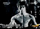 功夫中国之咏春拳(上)4