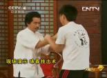 功夫中国之咏春拳(下)4