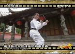 功夫中国 白鹤拳 4