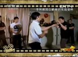 功夫中国 白鹤拳 5