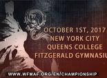 2017美国国际武术公开赛即将于纽约开锣