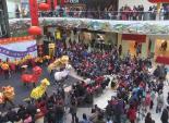 """美国大华府地区华人华侨及各族裔朋友们一起庆""""中国新年"""""""