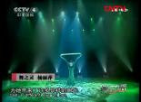 舞之灵-杨丽萍 5
