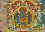 千年雪域奇葩-藏医药奇效 9
