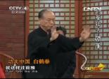 功夫中国 白鹤拳 6
